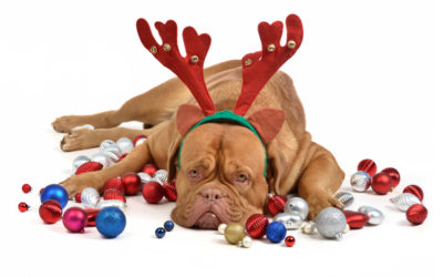How to Reduce Your Employees' Stress During Holidays